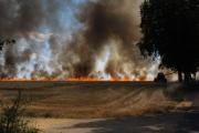 Flächenbrand Rohstorf